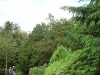 velddag-hoorneboeg-7-en-8-juli-2007-12