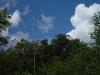 velddag-hoorneboeg-7-en-8-juli-2007-8